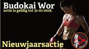 Nieuwjaarsactie 2018 - Budokai Wor